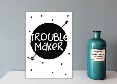 Poster: Troublemaker